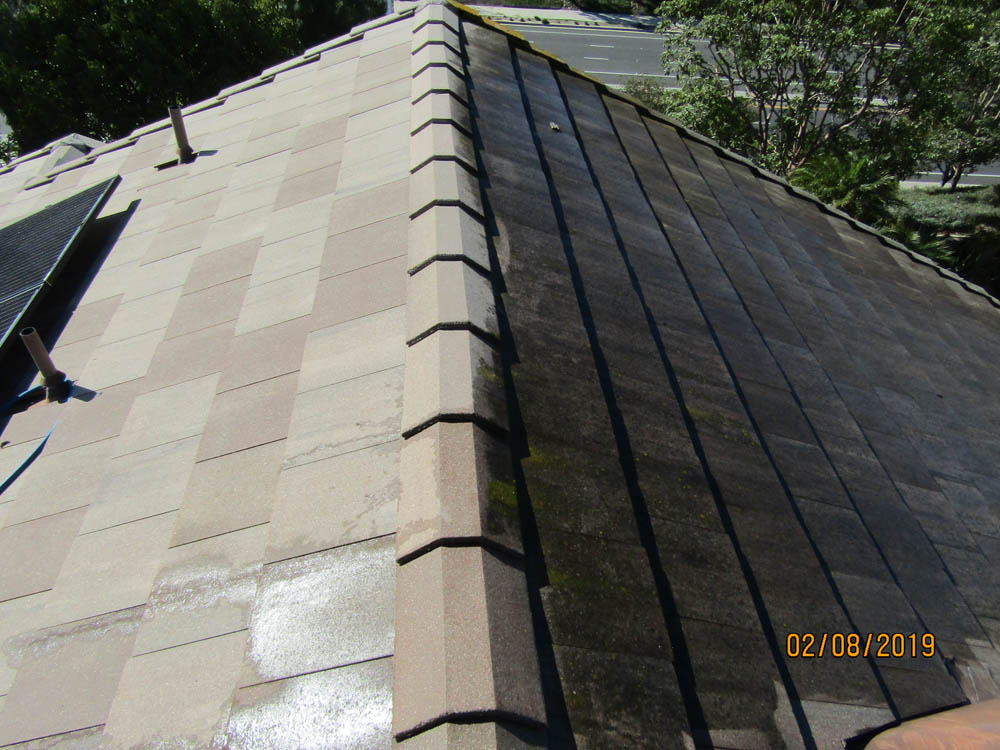 Roof Cleaning Before & After Slate Roof Tile