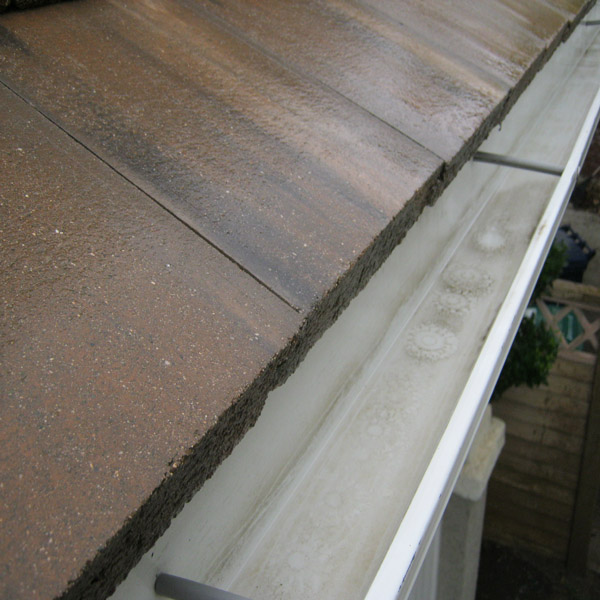 Roof Cleaning & Rain Gutter Cleaning