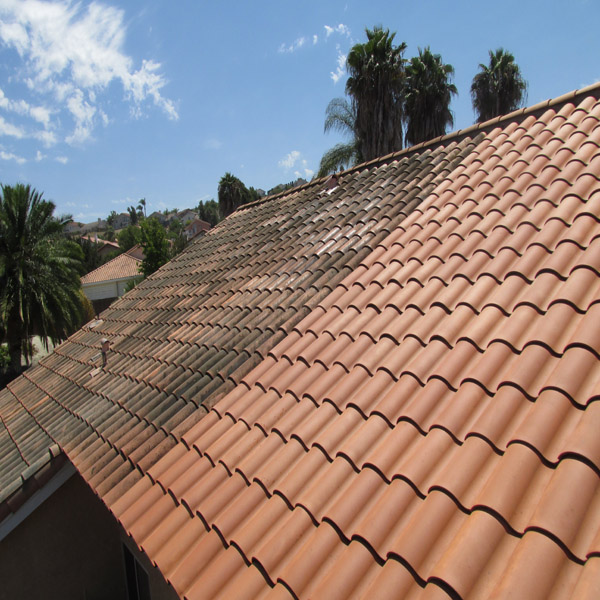 Roofcleaning.org Order Of Operations